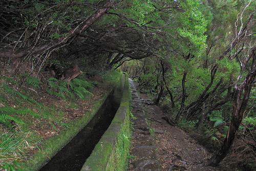 Levada at Rabaçal